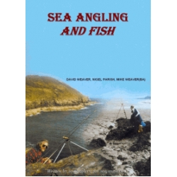 Sea Angling And Fish